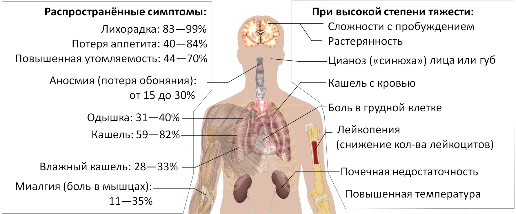 Symptoms of coronavirus disease 2019 4.0 ru